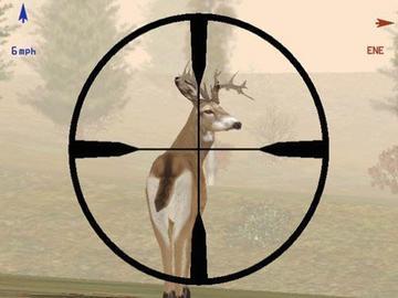 ffl rifles